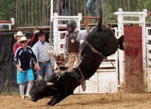Boyle Rodeo